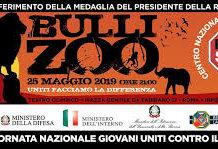 Bulli Stop