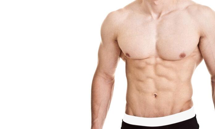 Muscoli pettorali