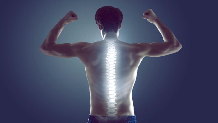 Mal di schiena - Esercizi